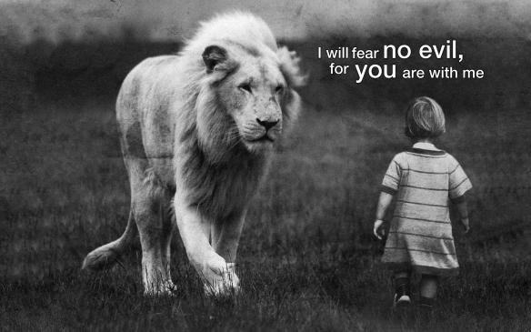 lion-fear-no-evil-wallpaper_1920x1200[1]